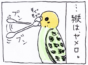 koma-menbo4.jpg