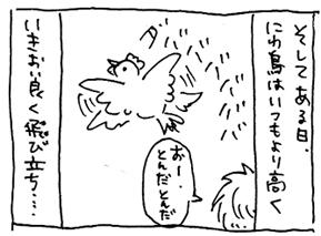 koma-niwa3.jpg