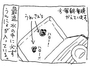 koma-osi1.jpg