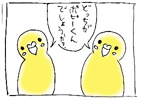 koma-popi4.jpg