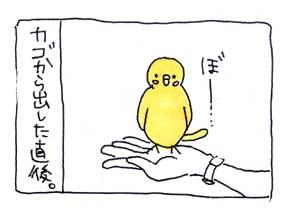koma-tobu1.jpg