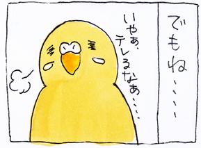 koma-toko3.jpg