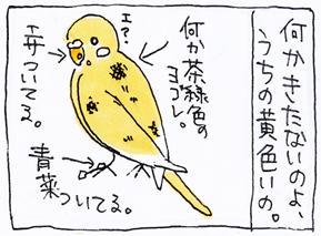 koma-toko4.jpg