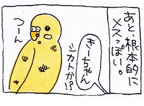 koma-toko5.jpg