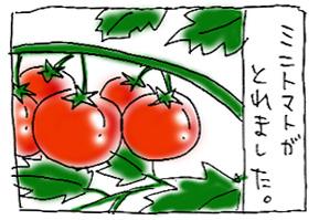 koma-toma1.jpg