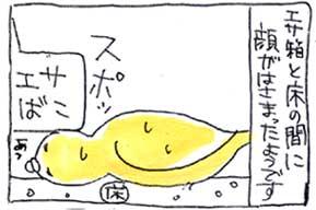 koma-yuka4.jpg