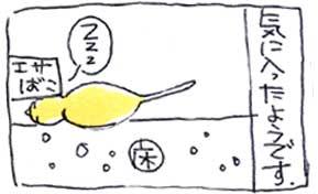 koma-yuka5.jpg