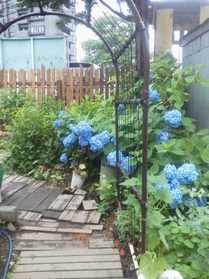 12-08-01_003_convert_20120801122245.jpg