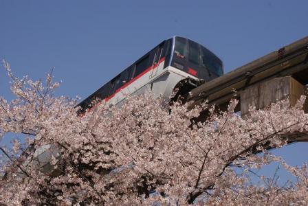 田町駅近くの公園