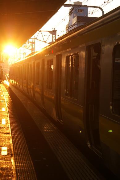 朝日に輝く電車
