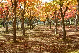 2014年10月赤川水源地