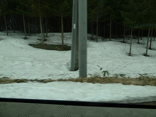 匠の森の雪