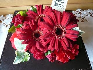 2012母の日の花