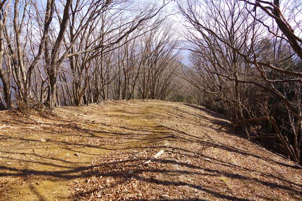 六ッ石山21