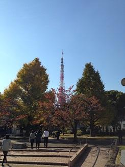 写真 2013-11-21 12 33 02
