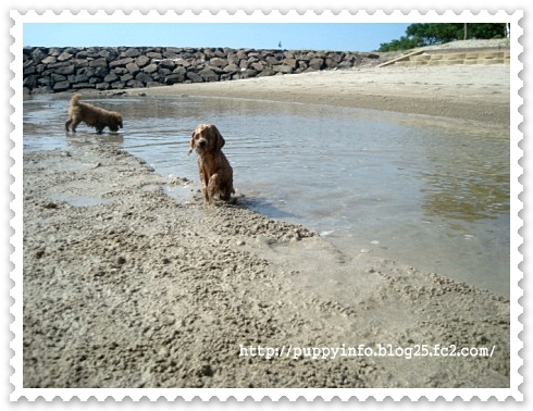 2010-09-19-081-003.jpg