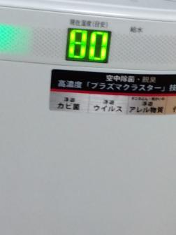 PICT0007_20110810095233.jpg