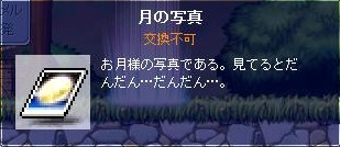 Maple101011_9.jpg
