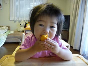 2010 06 18 ビワを食べる tibi03