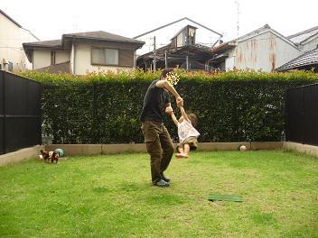2010 06 25 モモの日常 tibi007