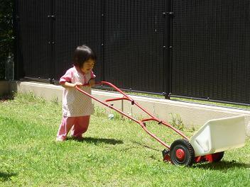 2010 06 28 芝刈り tibi05