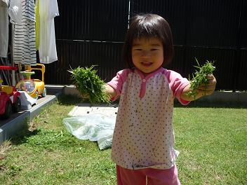 2010 06 28 芝刈り tibi01