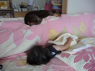 2010 07 24 絵本2 tibi04