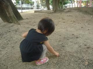 2010 09 09 どんぐり tibi01