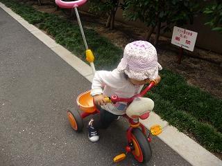 2010 09 26 三輪車 tibi01