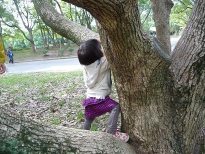 2010 10 17 大泉緑地 tibi02