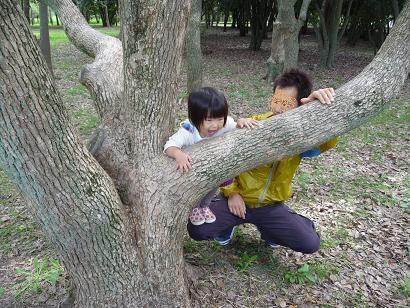 2010 10 17 大泉緑地 tibi04