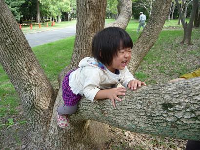2010 10 17 大泉緑地 tibi06