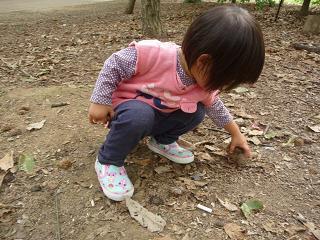 2010 10 24 大泉緑地公園 tibi03