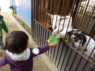 2010 10 27 バンビ&アトリエ tibi11