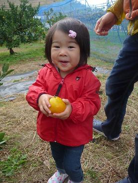 2010 10 31 みかん狩り tibi02