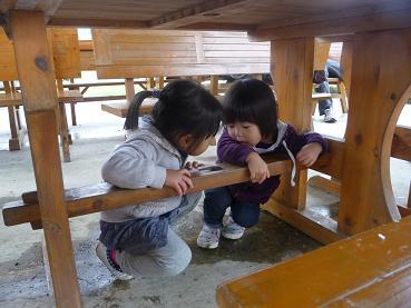 2010 10 31 みかん狩り3 tibi01