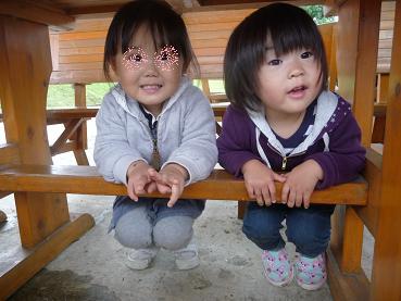 2010 10 31 みかん狩り3 tibi02