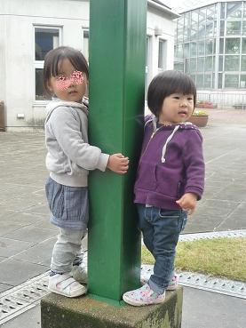 2010 10 31 みかん狩り3 tibi03
