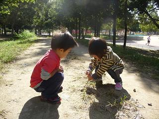 2010 11 03 久宝寺緑地2 tibi01