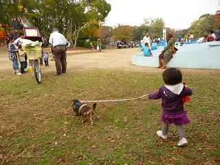 2010 11 14 久宝寺緑地 tibi06