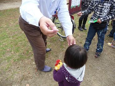 2010 11 14 久宝寺緑地 tibi07