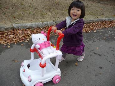 2010 11 14 久宝寺緑地 tibi10