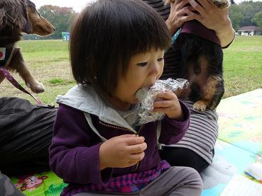 2010 11 14 久宝寺緑地 tibi13