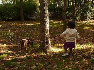 2010 11 21 大泉緑地 tibi01