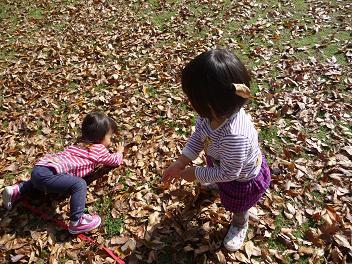 2010 11 21 大泉緑地3 tibi02