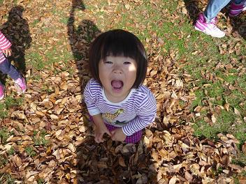 2010 11 21 大泉緑地3 tibi04