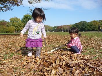 2010 11 21 大泉緑地3 tibi05