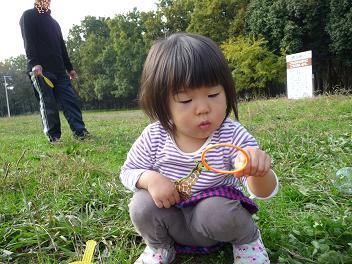 2010 11 21 大泉緑地4 tibi01