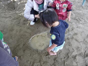 2010 11 24 バンビ組&アトリエ tibi03