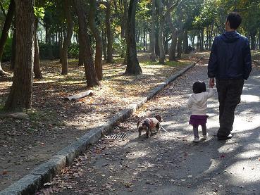 2010 11 21 大泉緑地 tibi03